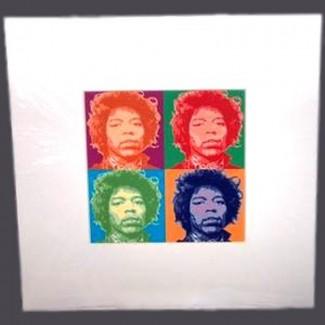 Cadre Jimmy Hendrix Pop Art