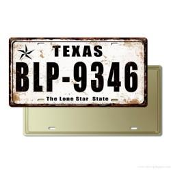 Plaque Immatriculation Texas USA