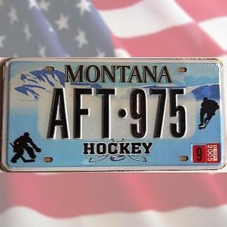 Plaque minéralogique US Montana Hockey